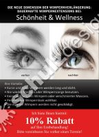 Mroz-Flyer-A6-Luxuslashes-2011_1