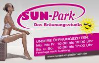 Sun-Park-VK-1