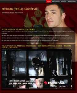 Webdesign Predrag Pedja Radosevic Profiboxer