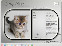 Webdesign Cattery Design Homepage Hannover